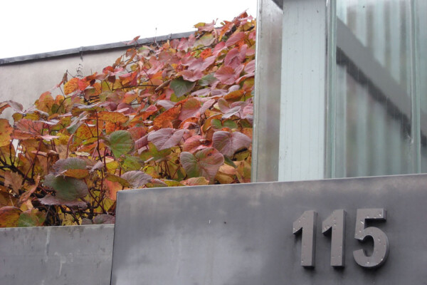 Building number 115 on a glass and metal building